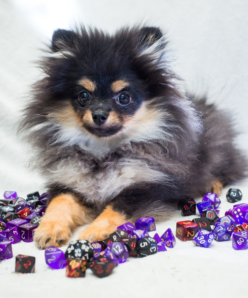Image of dog (our player) with assorted dice