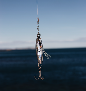 Image of lure on fishing line